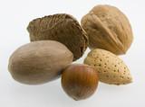Macro of five nuts - walnut, hazelnut, pecan, almond, Brazilian poster