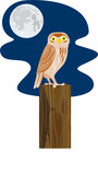 Owl perched on a post with moon poster