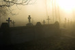 Old gloomy cemetery in a morning fog