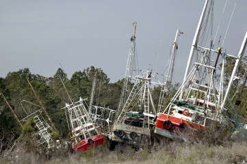 Grounded Shrimp Boats
