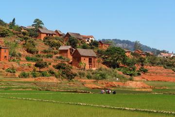 madagascar, riziere et village