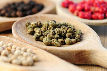 Four kinds of peppercorns in wooden cooking spoons macro
