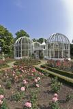 birmingham botanical gardens midlands england uk poster