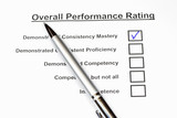Overall Performance Rating 3