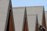 Alpine rooftop poster