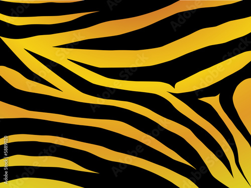 Vector black and orange stripped tiger design