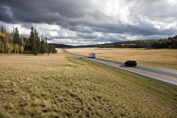Road - Kaibab National Forest Arizona USA (AC)