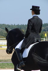 equestrian woman riding black stallion horse