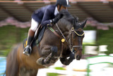 Blurred image of a equestrian competitor in action. poster