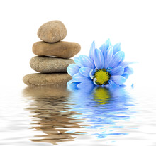 Therapie stenen met bloemen geïsoleerd