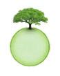Arbre sur sphère végétale