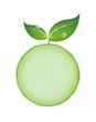 Feuilles sur sphère végétale