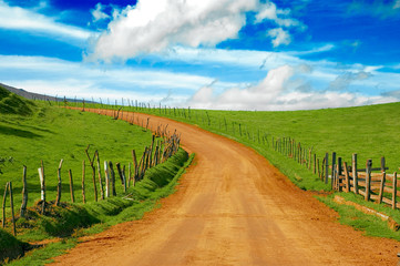 beautiful dirt road and meadow, please check my portfolio!