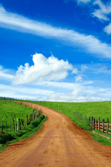 beautiful dirt road and meadow,please check my portfolio!