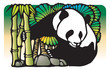 panda lives with bamboos