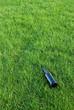 bottle in the grass II