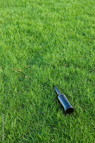 bottle in the grass II