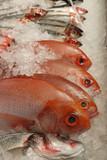 fish on fishmonger slab poster