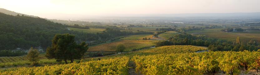 paysage automnale de Provence