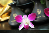 Bath oil and conditioner with a pink orchid. poster