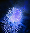 Great firework on night sky - celebration of an event.