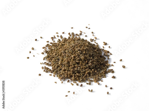Celery Seed isolated