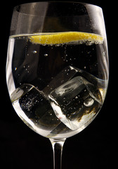 Glass of water with lemon and ice