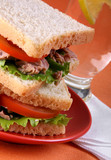 Tuna sandwich with tomato on orange background poster