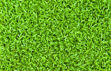 Bright Green Grass Background Texture
