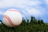 Baseball sitting on grass with sky background