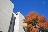 Lake County administration building - Waukegan, Illinois. poster