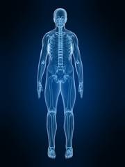 männliche röntgenaufnahme