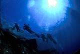 Fototapety subacquei