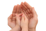 human hands isolated on white - parenting concept poster