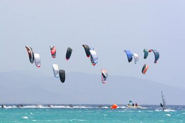 Kite Regatta
