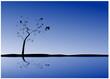 vecteur série - arbre en ombre chinoise sur ciel bleu