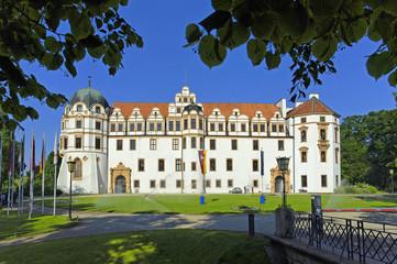 Celle, Schloss