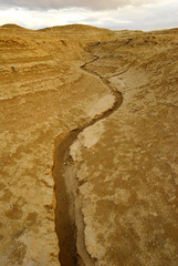 A dried-up stream in the desert