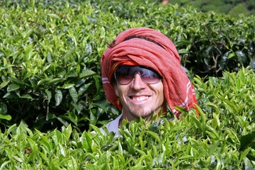 caucasian man at tea plantation, kerala, india