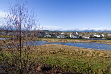 A residential area in the beautiful Willamette Valley, Oregon