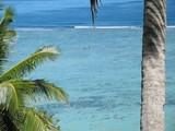 pirogue sur le lagon turquoise et cocotiers  poster