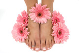 Pedicured feet and pink daisies (Easter Spa) poster