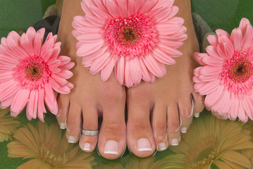 Pedicured feet and pink daisies (Easter Spa)