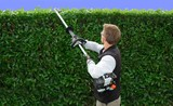 hedge trimming poster