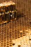 macro honeycomb with piece poster