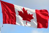 A little Canadian Patriotism poster