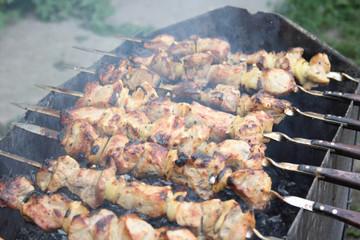 On a photo shish kebabs during preparation
