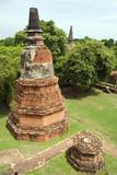 Ayutthaya Chedi poster