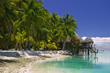 Tropical Dream Beach Paradise of the South Pacific  - 6037045