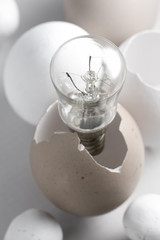 Lightbulb hatches from egg